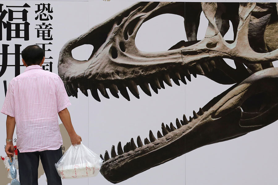 Dinosaur fossil exhibited in Japan