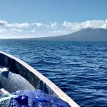 Marine and Tectonics research